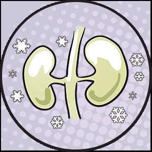 candivac - dbanie o nerki - infekcjami miejsc intymnych